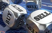 CMX, TCB, TDM, MDG, SDG, ELC, HIG, SJE: Thông tin giao dịch lượng lớn cổ phiếu