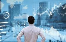 EVN đưa gần 2,7 triệu cổ phần EVN Finance (EVF) ra bán đấu giá