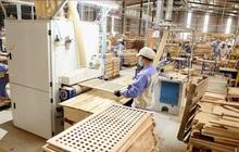 Xuất khẩu gỗ đạt kỷ lục, có thể về đích 13 tỷ USD trong năm 2020