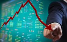 Chủ tịch HĐQT công ty Điện Tây Bắc lại đăng ký mua tiếp hơn 4 triệu cổ phiếu NED