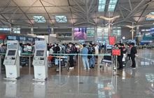 Đưa hơn 250 công dân Việt Nam từ Hàn Quốc về nước