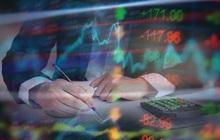 Xu hướng mới trên Phố Wall: Cổ phiếu vốn hoá càng nhỏ thì lợi nhuận càng lớn, công ty yếu kém cũng tăng vượt trội