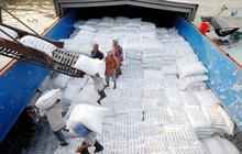 Xuất khẩu gạo sang Philippines lần đầu vượt mốc 1 tỷ USD