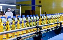 Kido Group (KDC): LNTT năm 2020 tăng 47% lên 418 tỷ đồng