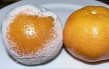 3 loại trái cây kích thích sự phát triển của ung thư mà chuyên gia cảnh báo: Loại thứ 2 người Việt hiện vẫn sử dụng rất nhiều
