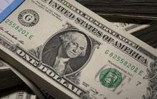 Dù tăng giá, đồng USD vẫn đang bị bán khống mạnh