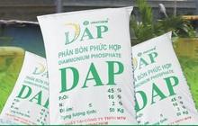 DAP – VINACHEM (DDV): Quý 4 lãi 56 tỷ đồng cao gấp 16 lần cùng kỳ