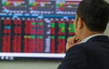 Nhiều Công ty chứng khoán đồng thuận dự báo VN-Index sẽ sớm hồi phục sau phiên giảm sâu