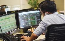 Cổ phiếu chứng khoán tăng gấp 3 so với đáy: Đà tăng có phản ánh đúng lợi nhuận?
