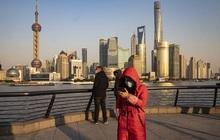 Mong muốn đổi đời nhờ chứng khoán, nhà đầu tư Trung Quốc từ bỏ chiến lược tự chọn cổ phiếu, rót tiền vào các quỹ tương hỗ