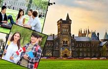 """Người Việt làm việc 20 năm tại trường ĐH số 1 Canada tiết lộ thời điểm vàng để nộp đơn du học và 2 lưu ý quan trọng để khỏi dính """"quả lừa"""""""