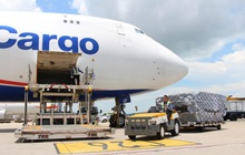Các công ty logistics hàng không sống khỏe, lãi thậm chí về sát đỉnh trước đại dịch khi Vietjet, VNA vẫn lỗ