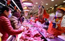 Giá thịt lợn Trung Quốc tăng trở lại