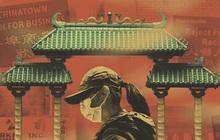 Một năm mất mát của các 'Chinatown' tại Mỹ