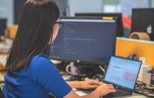 Coder hay lập trình viên là nghề gì mà thu nhập cao đến mức nộp thuế tiền chục tỷ?