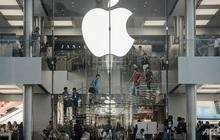 Cột mốc quan trọng của Apple khi iPad được sản xuất tại Việt Nam