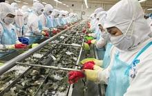 Phục hồi sản xuất kinh doanh: Doanh nghiệp 'đói' vốn