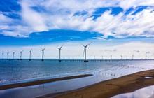 Dự án điện gió ngoài khơi 5.000 tỷ đồng ở Trà Vinh hoàn thành lắp đặt 25/25 trụ gió