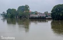 Cận cảnh hơn trăm hộ dân ở Hà Nội bị cô lập giữa biển nước