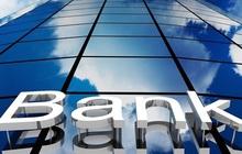 Cổ phiếu ngân hàng OCB tăng vọt hơn 4%, CTG và STB lại bị khối ngoại xả mạnh