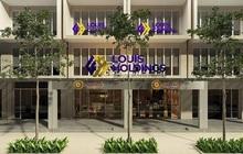 Louis Capital (TGG) báo lãi 65 tỷ đồng 9 tháng đầu năm, gấp gần 33 lần mục tiêu kế hoạch cả năm