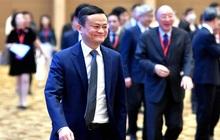 Jack Ma vừa tái xuất ở châu Âu, cổ phiếu Alibaba ngay lập tức thăng hoa