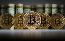 Bitcoin lập đỉnh mới trên 65.500 USD