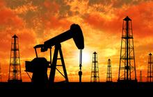 Việt Nam trong cơn sốt giá dầu
