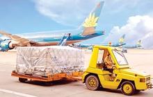 Bất chấp ngành hàng không lao đao Covid-19, lợi nhuận 9 tháng của Noibai Cargo (NCT) vẫn tăng 9% lên 169 tỷ đồng