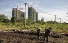 Thương vụ bán tài sản 2,6 tỷ USD bất ngờ đổ bể, Evergrande sắp cạn sạch tiền