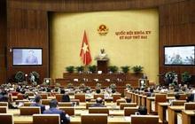 Hôm nay, Quốc hội họp về dự án Luật Kinh doanh bảo hiểm (sửa đổi)