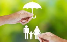 Tái bảo hiểm PVI (PVIRe) báo lãi sau thuế quý 3 giảm 20% so với cùng kỳ 2020