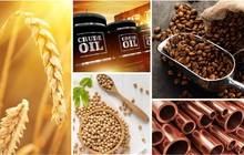 Thị trường ngày 23/10: Giá than giảm mạnh khiến đồng, sắt thép hạ nhiệt; giá dầu, vàng, khí đốt tăng