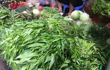 """Trời mưa giá rau ở Hà Nội """"tăng phi mã"""", rau muống 24 ngàn/mớ"""
