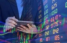 Nhiều cổ phiếu ngân hàng giảm giá tuần qua, LPB giảm mạnh nhất