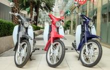 Xe số giá 22 triệu đậm chất Honda Cub về Việt Nam, đe nẹt Honda Wave Alpha