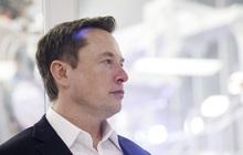 """Elon Musk """"đút túi"""" hơn 36 tỷ USD chỉ sau 1 đêm, tài sản gần chạm mốc 290 tỷ USD"""