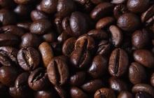 Cà phê Robusta tăng lên mức cao nhất kể từ 2017