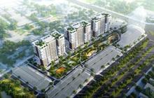 Thanh Hoá không chấp thuận điều chỉnh cục bộ quy hoạch dự án Khu nhà ở AMC