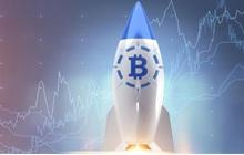 Dự báo sốc: Bitcoin có thể cán mốc 100.000 USD vì ngày càng khan hiếm