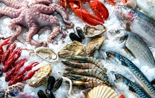 Seaprodex (SEA): Quý 3 lãi kỷ lục 162 tỷ đồng, gấp gần 16 lần cùng kỳ