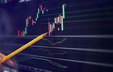 Chi hàng trăm tỷ đầu tư chứng khoán, SAM Holdings lãi lớn với các mã HSG, HPG, FPT…