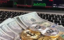 USD chiều 26/10 tăng, vàng giảm, dòng tiền chảy vào Bitcoin cao kỷ lục với dự đoán BTC sẽ có giá 100.000 USD
