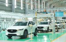11 nhà nhập khẩu ô tô kiến nghị được giảm 50% lệ phí trước bạ
