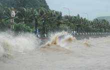 Tâm áp thấp nhiệt đới ngay trên bờ biển tỉnh Khánh Hòa
