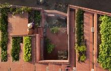 Nhà Quảng Ngãi thắng giải do tạp chí Quốc tế bình chọn: Nấu bếp củi, nuôi gà giữa căn nhà đầy chất nghệ, vườn rau trên mái tái hiện sinh động nếp sống làng quê