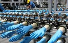 Ngân hàng siết khoản nợ hơn 1.000 tỷ của một công ty sản xuất găng tay y tế