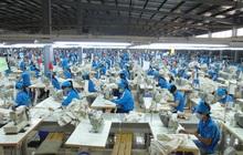 ILO: Yếu tố để các nước thu nhập thấp bắt kịp với các nền kinh tế phát triển chỉ trong 1 quý về phục hồi số giờ làm việc