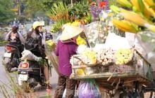 Hoa tươi sau Tết ở Hà Nội rớt giá thê thảm chưa từng thấy