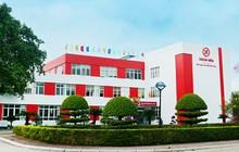 Xuân Hòa Việt Nam (XHC) chuẩn bị trả cổ tức bằng tiền tỷ lệ 20%